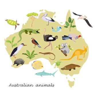 Resumo mapa da austrália com animais e pássaros.