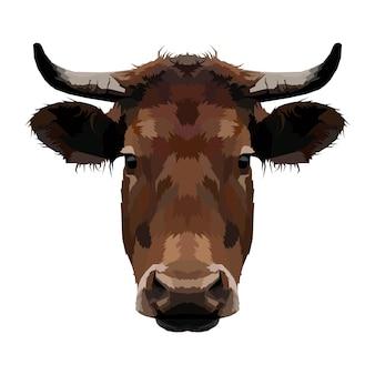 Retrato da cabeça da vaca