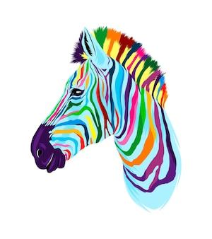 Retrato da cabeça da zebra em tintas multicoloridas respingo de aquarela colorido desenho realista