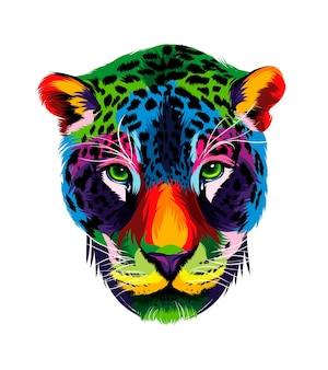 Retrato da cabeça do jaguar com tintas multicoloridas respingo de aquarela colorido desenho realista
