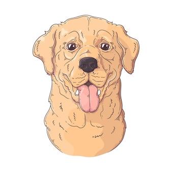Retrato de cachorro labrador retriever desenhado à mão