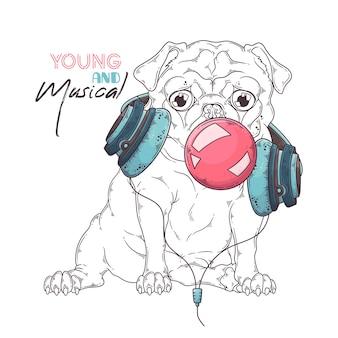 Retrato de cão pug fofo em fones de ouvido musicais infla uma bolha de chiclete.