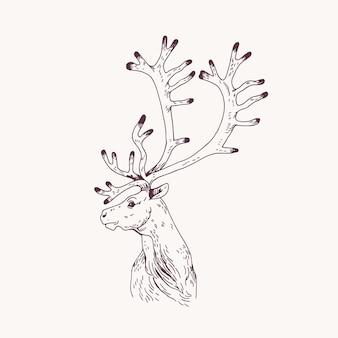 Retrato de contorno de veado, cervo ou veado macho. cabeça de gracioso animal selvagem com chifres desenhados à mão na luz de fundo. elemento de design decorativo. ilustração vetorial monocromática para logotipo.