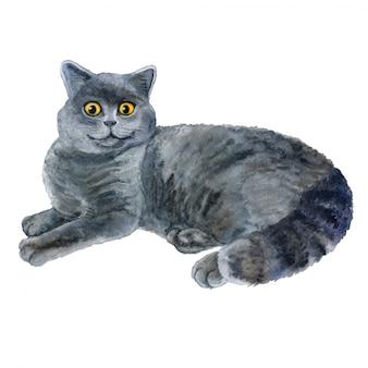 Retrato de gato cinza aquarela