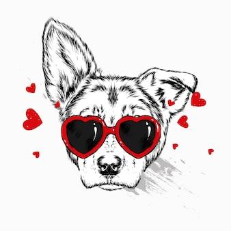 Retrato de um cão ou cachorrinho com óculos em forma de coração.