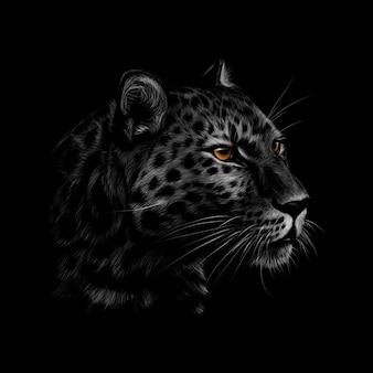 Retrato de uma cabeça de leopardo em um fundo preto. ilustração