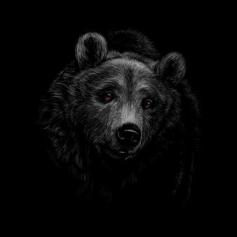 Retrato de uma cabeça de urso pardo em um fundo preto. ilustração vetorial