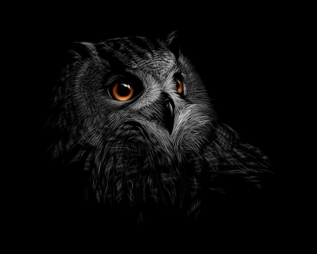 Retrato de uma coruja orelhuda em um fundo preto. ilustração