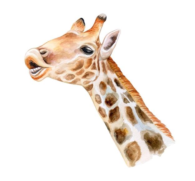 Retrato de uma girafa. animais africanos. aquarela