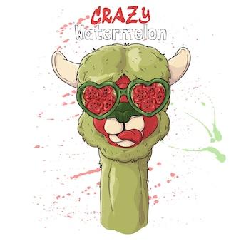 Retrato de uma linda alpaca em óculos de efeito melancia