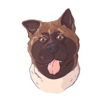 Retrato desenhado à mão de um cão akita