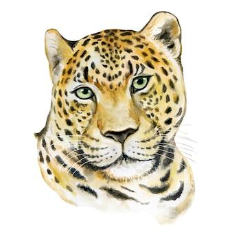 Retrato em aquarela de leopardo
