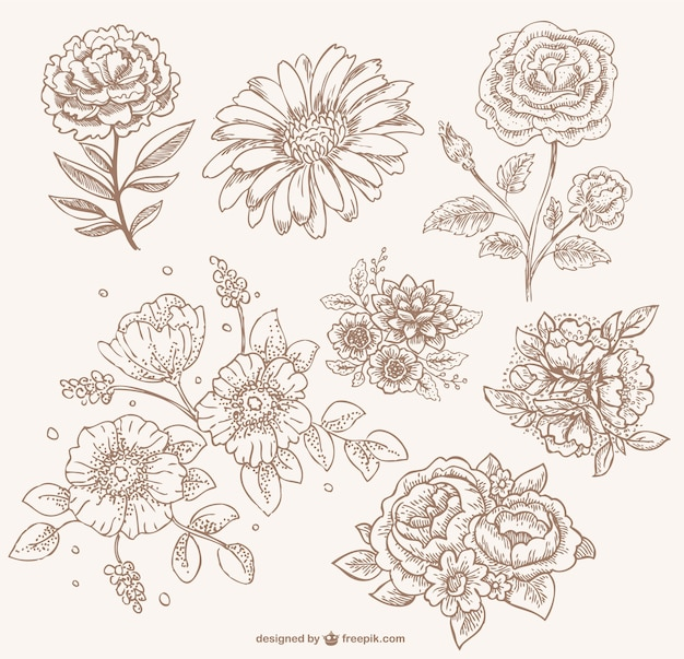 Retro sepia linha floral arte