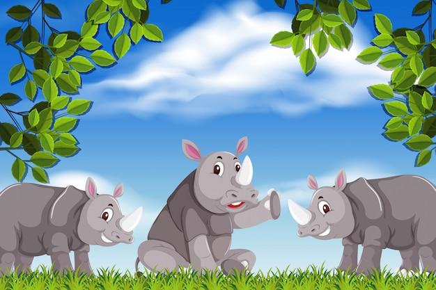 Rinoceronte em cena da natureza