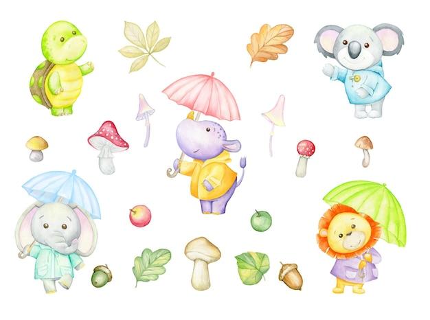 Rinoceronte, tartaruga, leão, elefante, coala, guarda-chuvas, folhas de outono, cogumelos, maçãs, aquarela, conjunto, estilo cartoon.
