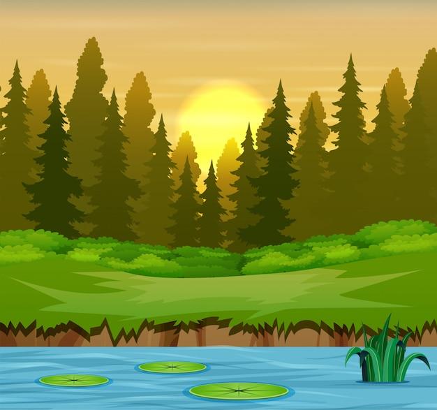 Rio na ilustração da floresta e árvores
