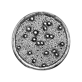 Risoto vintage com ilustração de ervilha. risoto de estilo gravado, desenho de logotipo, ícone, etiqueta, embalagem. desenho de prato de comida italiana.