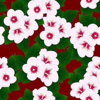 Rosa de sharon em fundo vermelho