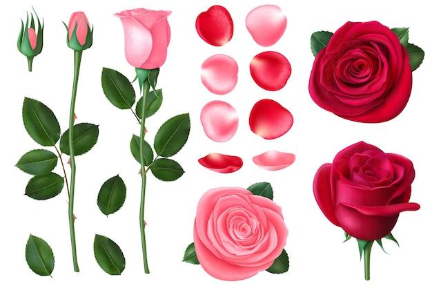 Rosa e rosa vermelha. doces flores românticas, bouquet de primavera e verão com pétalas. elemento floral 3d realista dos namorados e do cartão de casamento. bouquet floral romântico, ilustração de rosa de casamento