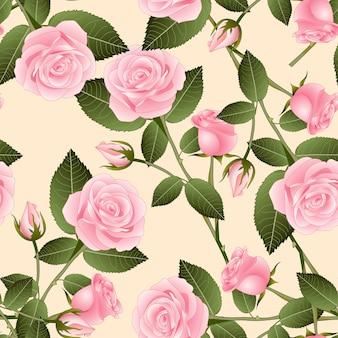 Rosa em fundo bege marfim