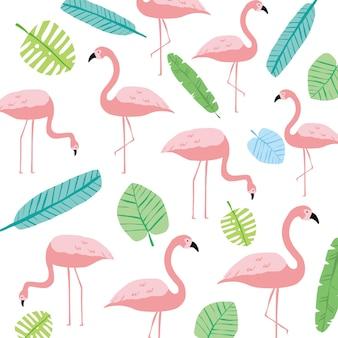 Rosa folha selvagem e flamingo primavera alegre verão
