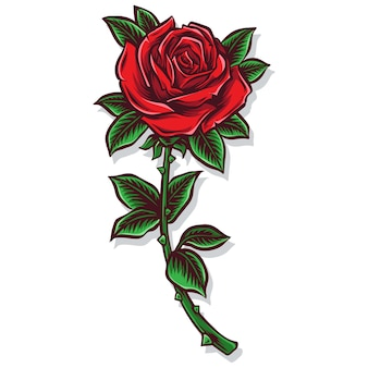 Rosa haste vetor e ilustração