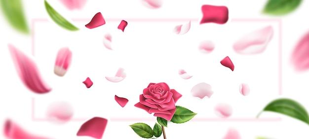 Rosa realista de vetor em pétala de rosa borrada e folhas de fundo romântico
