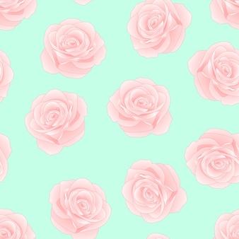 Rosa rosa em fundo verde hortelã