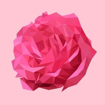 Rosa rosa poligonal, flor de triângulo do polígono