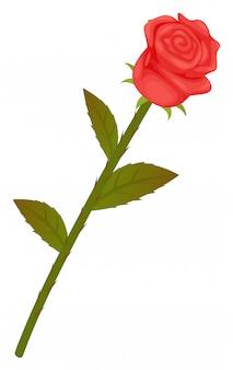 Rosa vermelha com folhas