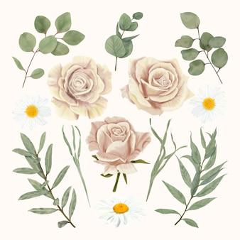 Rosas bege com margarida e folhas de eucalipto