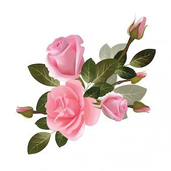 Rosas buquê. coleção de lindas flores vermelhas e brancas