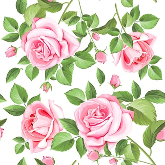 Rosas elegantes e folhas padrão sem emenda