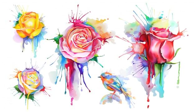 Rosas em aquarela, conjunto de ícones do vetor