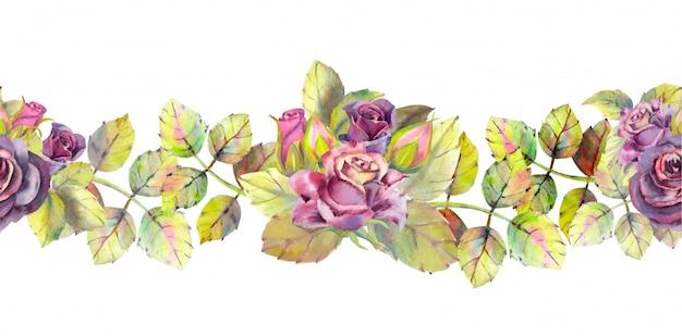 Rosas escuras, brotos, folhas. repetindo a borda horizontal do verão.