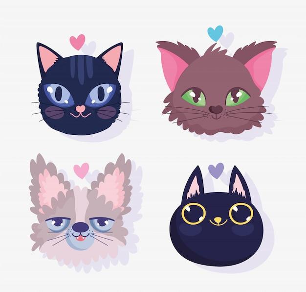Rostos bonitos gatos amam animal doméstico amigável dos desenhos animados, ilustração de animais de estimação coleção