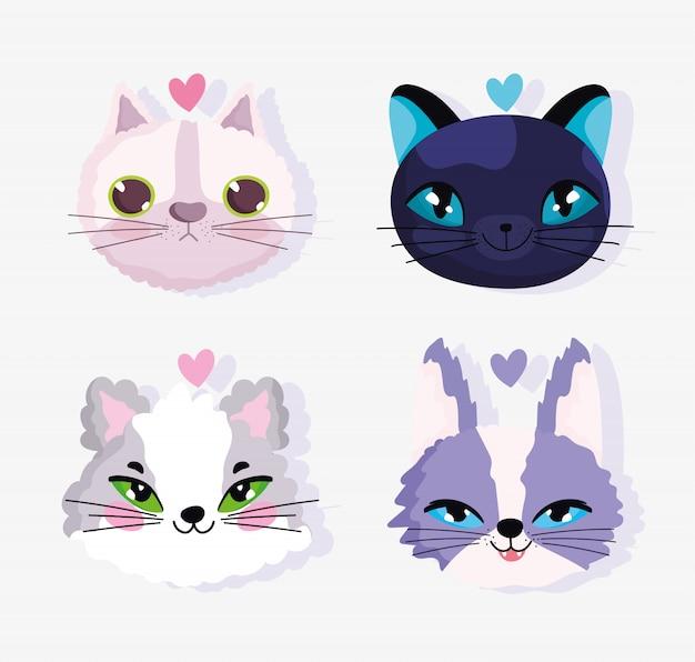 Rostos bonitos gatos amam animal doméstico dos desenhos animados, ilustração de animais de estimação coleção