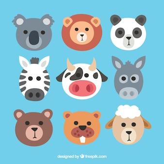 Rostos de animais com design plano