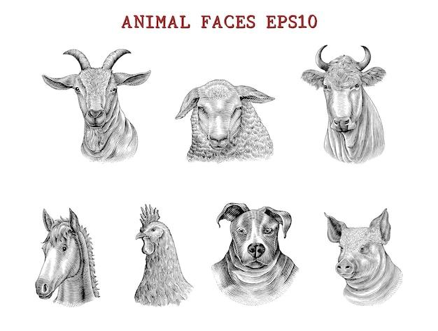 Rostos de animais desenho à mão gravura estilo clip-art preto e branco isolado no branco