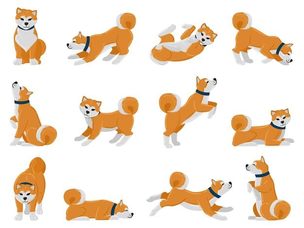 Rotina diária do cão dos desenhos animados akita, filhote de cachorro andando, dormindo e uivando. truques de animais domésticos, ações de animais bonitos akita conjunto de ilustração vetorial. adorável cão de raça akita