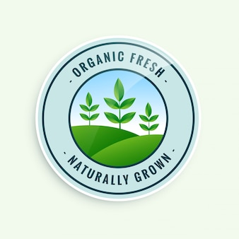 Rótulo de alimentos orgânicos frescos cultivados naturalmente