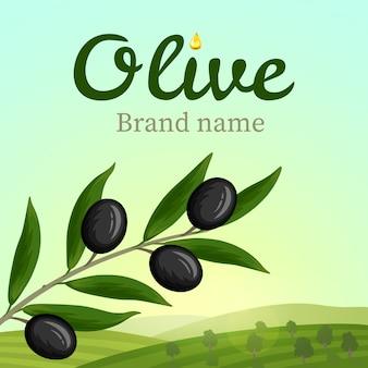 Rótulo de azeitona, design de logotipo. ramo de oliveira