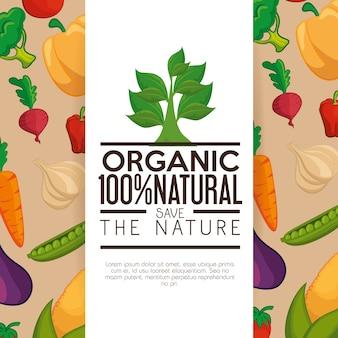 Rótulo orgânico com folhas sobre fundo branco e bege com legumes. ilustração vetorial.