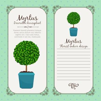 Rótulo vintage com planta myrtus