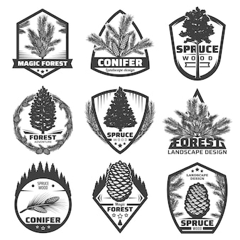 Rótulos de coníferas monocromáticas vintage com ramos de pinheiros abetos e cones isolados