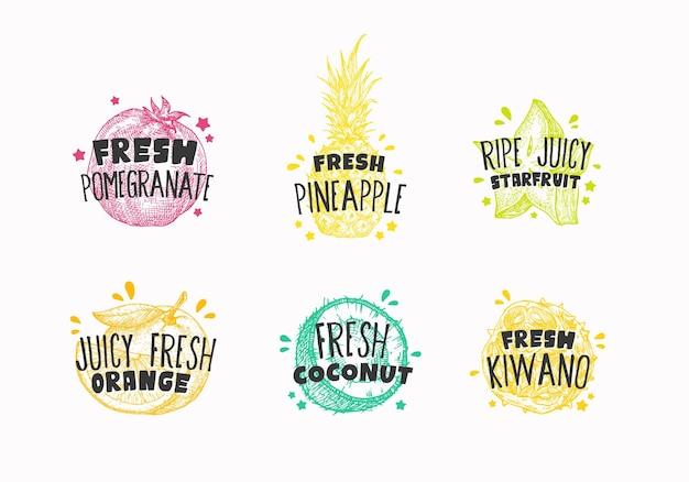 Rótulos de emblemas de frutas ecxóticas frescas suculentas ou coleção de modelos de logotipo mão desenhada romã kiwano ...
