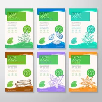 Rótulos de especiarias e nozes locais frescas, embalagem, layout, coleção, vetor, fundo, conjunto de capas