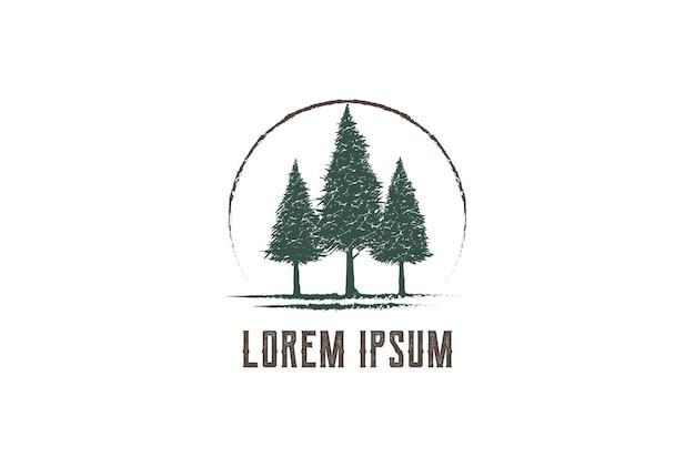Rústico pinheiro perene cedro abeto conífera abeto larício cypress cichala árvores florestas logo design vector