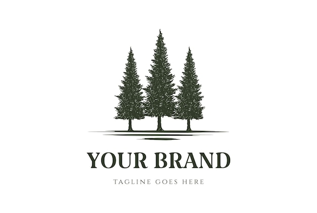 Rústico pinheiro perene cedro cipreste larch coníferas coníferas abeto floresta design vector