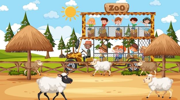 Safari durante o dia com muitas crianças observando um grupo de ovelhas